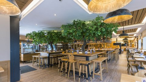 wineo Purline Bioboden Holzoptik Bar Hotel Holz Westernstyle rustikal Lounge Pflanzen