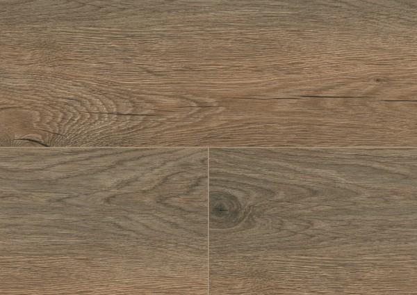 Detail_MLP041R_Valley_Oak_Soil.jpg