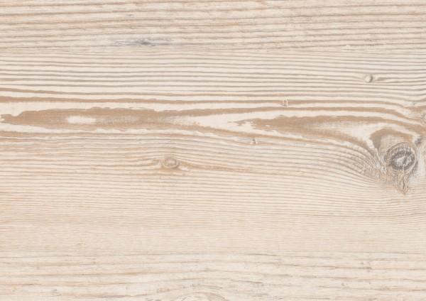 Detail_PLC019R_Malmoe_Pine.jpg